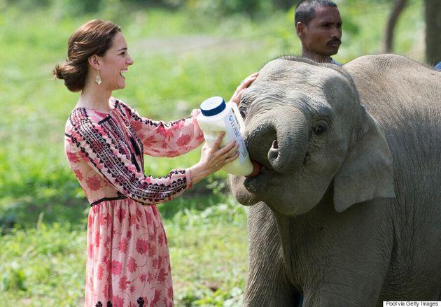 Kate Middleton est parfaite dans cette robe Topshop