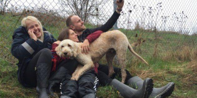 Cooper le labradoodle, le chien perdu par Westjet, est miraculeusement