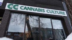 Réouverture des boutiques Cannabis