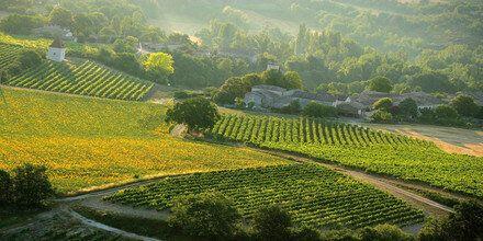 Le Sud-Ouest, région viticole méconnue de