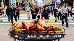 Une manifestante de PETA nue sur un «BBQ»