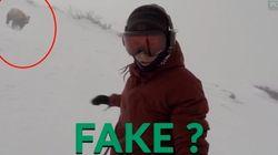 Cette vidéo d'une snowboardeuse poursuivie par un ours devient virale, Internet est