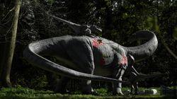 Des dinosaures étaient couvés comme des petits