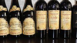 Les nouveaux vins haut de gamme de la maison