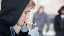 La consommation de cannabis en hausse au