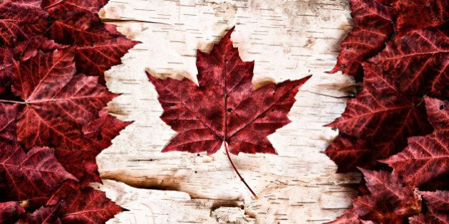 the image of the flag of canada