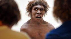 L'homme de Néandertal était-il