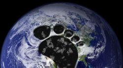 4 trucs simples pour diminuer notre empreinte écologique au