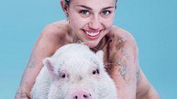 Miley Cyrus pose nue avec sa truie