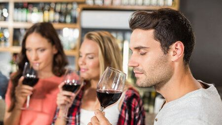 53794683 - friends smelling wine at bar