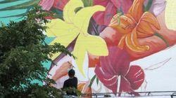 La minute positive: Assister à la création de murales en temps réel
