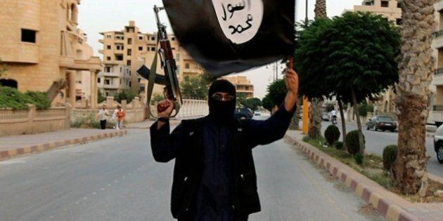 Interpol a diffusé une liste de 173 combattants du groupe armé État islamique susceptibles de commettre...