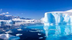 Un robot a exploré la vie sous-marine en Antarctique, et c'est très