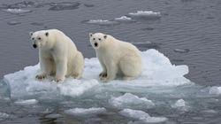 Le réchauffement a accentué certains événements climatiques