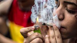 La légalisation de la marijuana fait-elle augmenter la consommation chez les