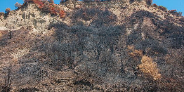 Un pompier volontaire pyromane arrêté dans le nord de