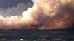 Des feux de forêt fusionnent en un brasier géant dans l'Ouest