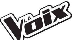 «La Voix 5»: Les nouveaux mentors