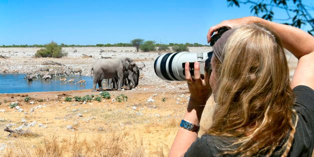 Un éléphant piétine un chasseur argentin en
