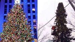 Comment trouvez-vous le sapin de Noël de