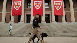 Harvard en tête du classement des meilleures universités; McGill