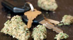 Cannabis au volant: Algorithme Pharma a les yeux rivés sur