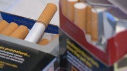 L'industrie du tabac en cour