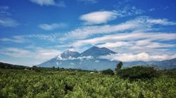 BLOGUE Le projet Guatecarbon: des résultats