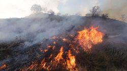 Incendie sans précédent à Los Angeles, plus de 500 foyers