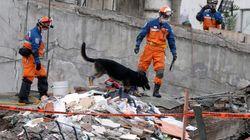 A Mexico, des survivants du séisme face à un avenir