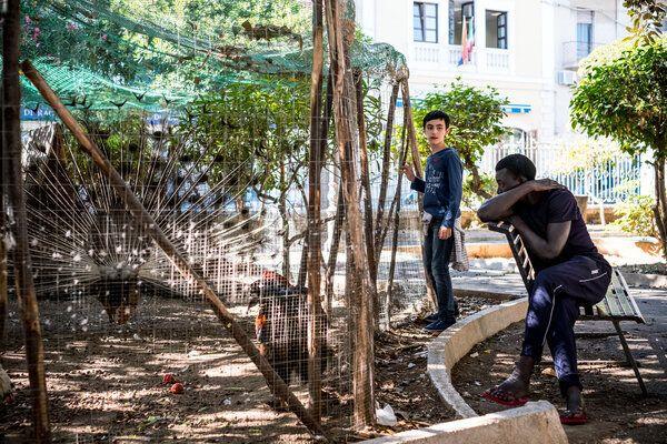 Sanna, âgé de 17 ans, visite le zoo lors d'une sortie du centre de réception pour les demandeurs d'asile qui sert également de centre d'hébergement pour les mineurs non-accompagnés, dans le port de Pozzallo, Sicile, en Italie (Mai 2016).