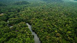 Le Brésil annule un permis d'exploitation minière d'une réserve