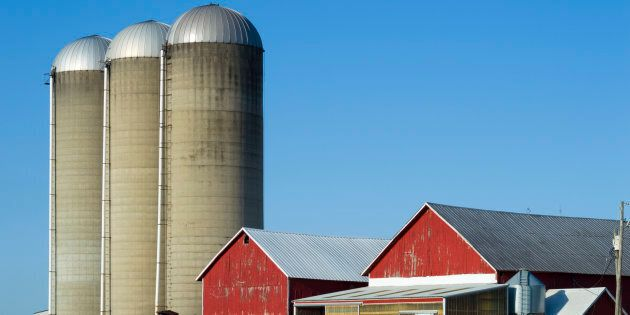 Rural Wisconsin Farm With Red Barns and