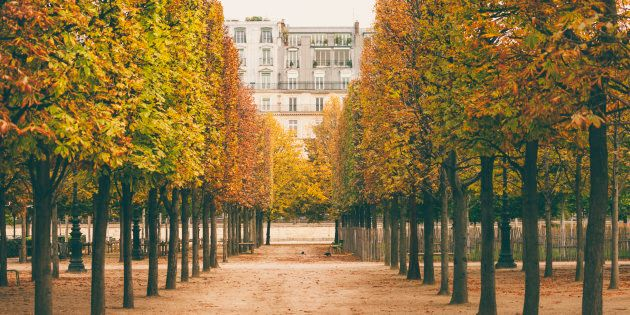 Dans cette ville splendide sous la lumière d'automne, on vous rappelle constamment à quel point on vous...