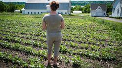 Dossier spécial: Quand l'agriculture