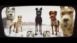 Découvrez la bande-annonce du nouveau film de Wes Anderson, «Isle of