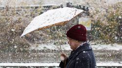 Les premiers flocons de neige tombent sur certains secteurs du