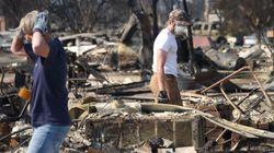 Des feux de forêt font 21 morts en