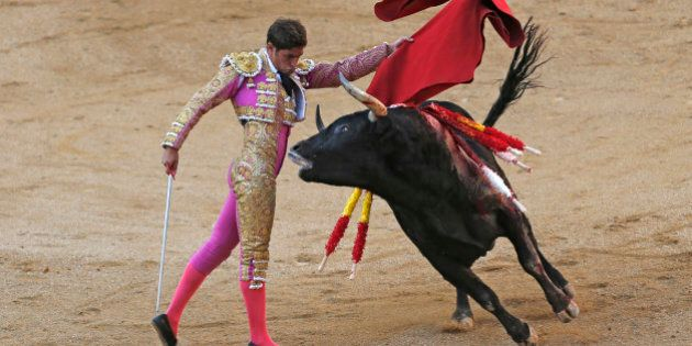 Spanish bullfighter Mario Palacios performs with an Aguadulce ranch fighting bull during a bullfight...