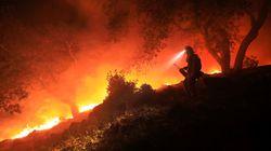 Des milliers de pompiers au front des feux de