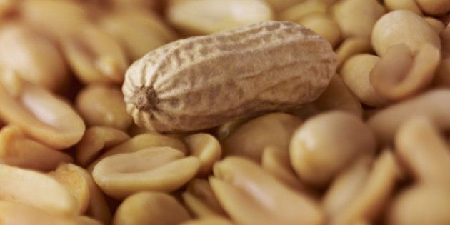 Extreme close up of peanuts