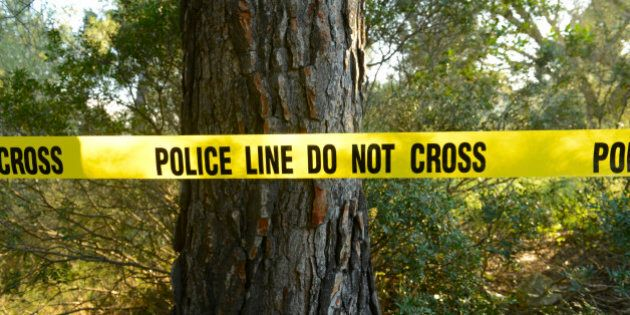 Crime scene in the forest with yellow police line do not cross tape