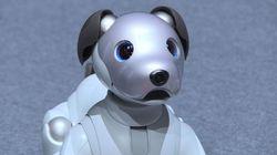 Sony dévoile son nouveau chien robot