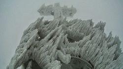 Cette magnifique sculpture de glace a été façonnée par le vent