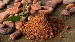 Pâques: les multiples vertus beauté du cacao et du chocolat sur notre