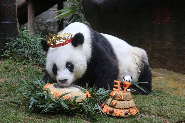 Basi mange un gâteau à l'occasion de son 37e anniversaire, en janvier