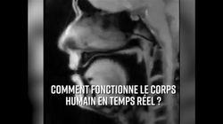 L'intérieur du corps humain filmé en
