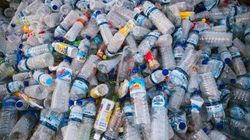 Le plastique à usage unique, nouvel ennemi de