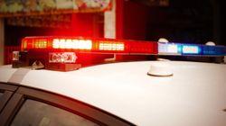 Le SPVM recherche des suspects en lien avec le vol de quatre oeuvres