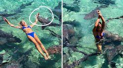 Une instagrameuse mordue par un requin en pleine séance